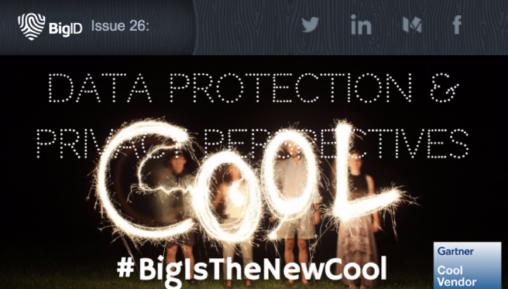 Newsletter Issue 26 #BigIsTheNewCool